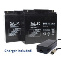 17ah batteries and charger