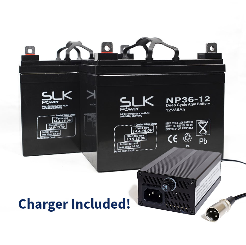 36ah batteries and charger